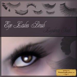 http://photoshopbrushes.ru/wp-content/uploads/2008/09/eye_lashes_by_lugubrum_stock_by_lugubrum_stock.jpg
