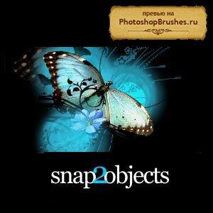 Кисти прекрасные бабочки