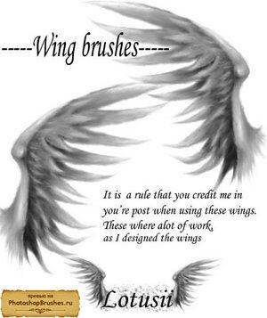Кисти магические крылья ангелов.