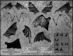Кисти крылья демонов
