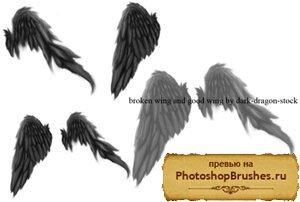 Кисти сломанные крылья ангелов