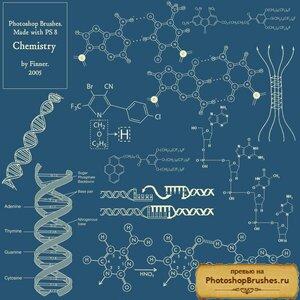 Кисти химия