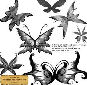 Кисти фантастические крылья
