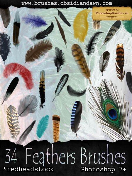 Кисти все виды перьев