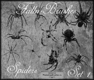 Кисти пауки