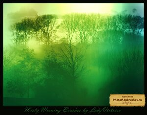 Кисти мистическое утро