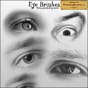 Кисти восемь глаз