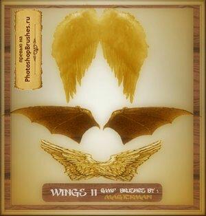 Кисти золотистые крылья