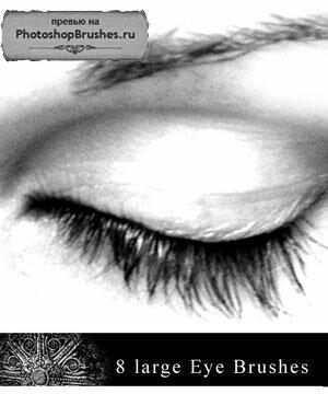 Кисти большие глаза