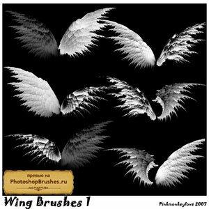 Кисти необычные крылья