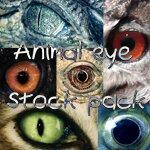 Кисти глаза животных