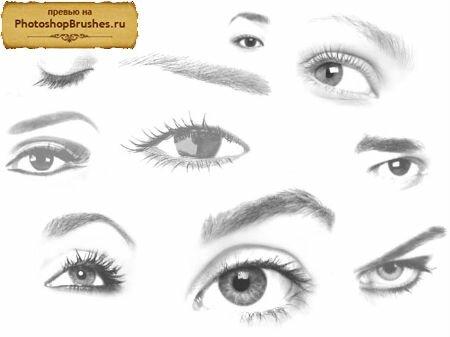 Кисти нарисованные глаза