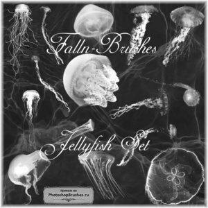 Кисти медузы