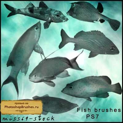 Кисти аквариумные рыбы